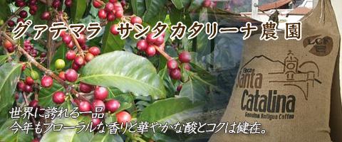 グァテマラ産 サンタカタリーナ農園コーヒー豆