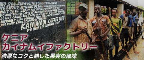 スペシャルティコーヒー ケニア カイナムイファクトリーコーヒー豆