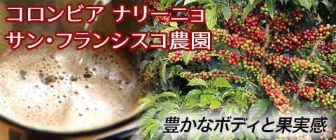 コロンビア ナリーニョ  サン・フランシスコ農園コーヒー豆