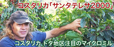 コスタリカ産 ホサンタテレサ2000コーヒー豆