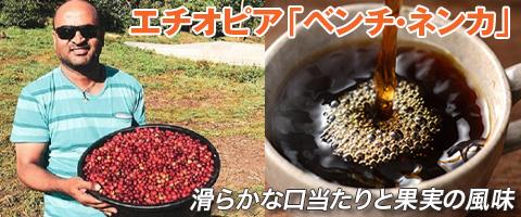 スペシャルティコーヒー エチオピア ベンチ・ネンカ コーヒー豆