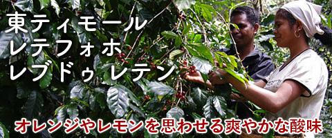 東ティモール レテフォホ レブドゥ レテン ハイロースト コーヒー豆